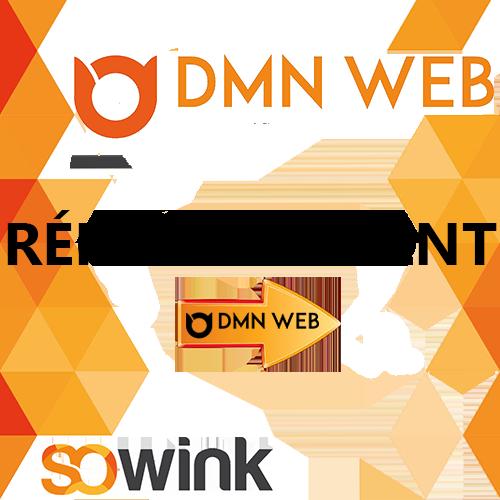 DMN-WEB-aide-numerique-05-REFERENCEMENT