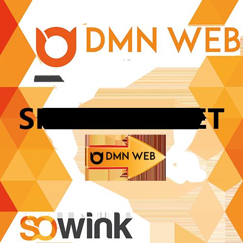 DMN-WEB-aide-numerique-05-SITE-INTERNET